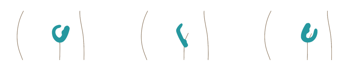 Crescendo Bendable Vibrator Usage Illustrations