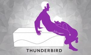 Liberator Equus Wave Sex Position Thunderbird